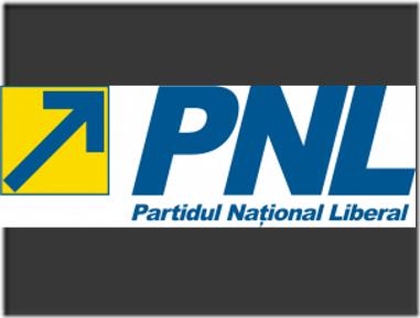 big_sigla-pnl-logo-300x102