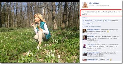 elena-udrea-facebook