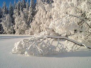 zapada_iarna.jpg