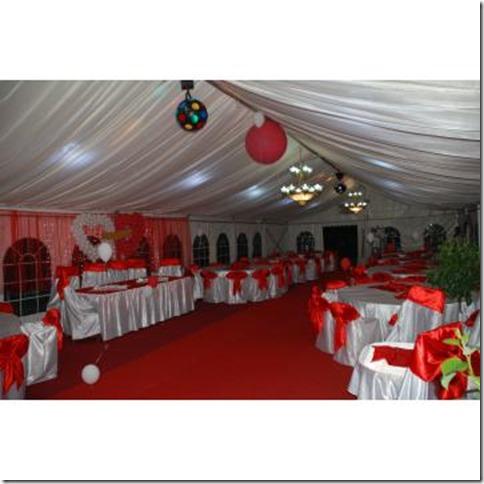 Corturi-de-petrecere-Organiam-nunti-botezuri_4565701_1329163913